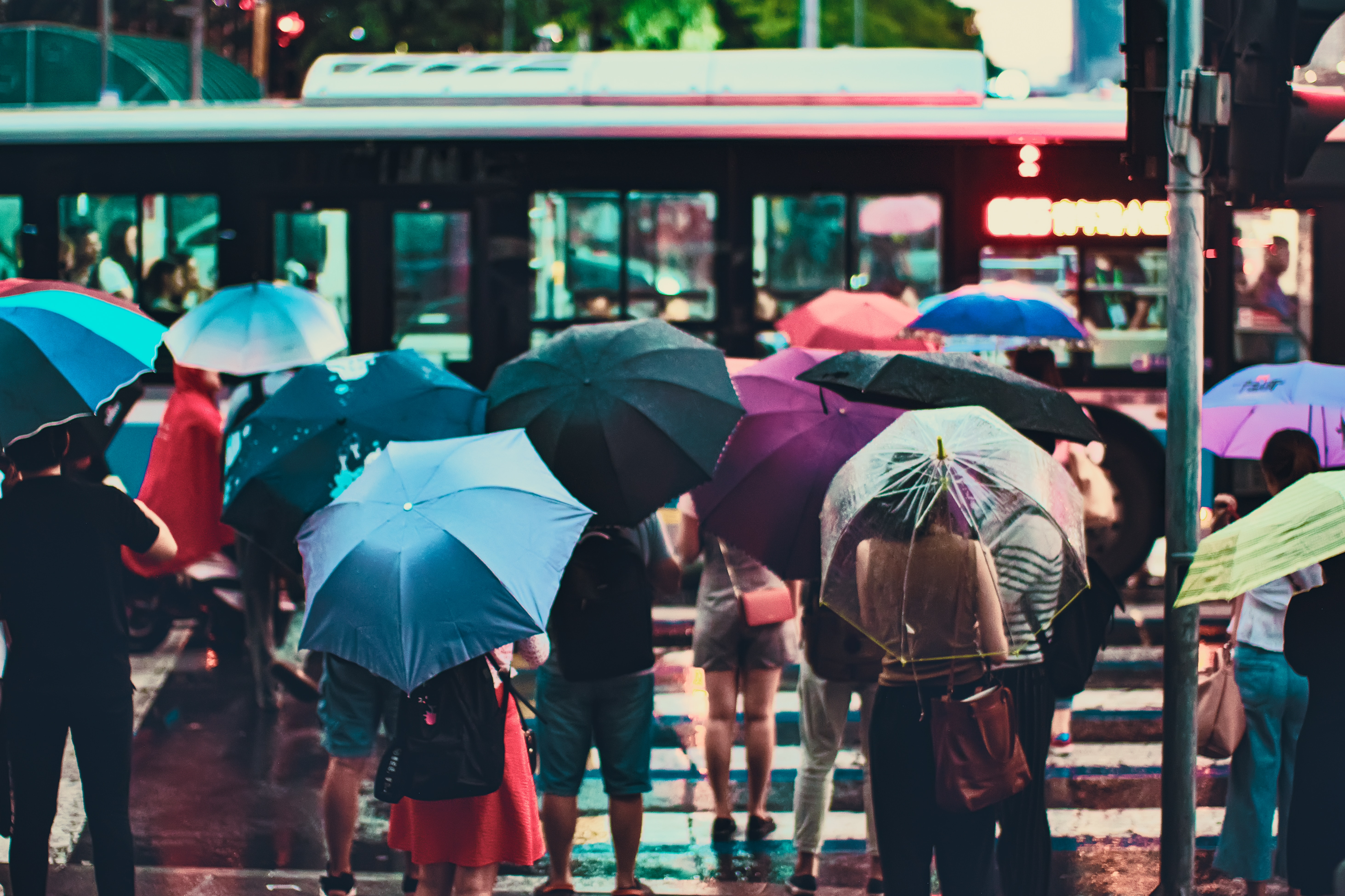 A group of people with umbrellas waiting at a pedestrian crossing.